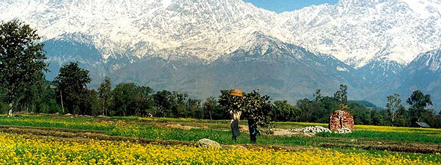 Delhi to Himachal Tour Package By Car